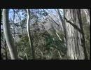地響きと回転飛行体「投稿!UFO・UMA 異次元宇宙編」