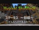 [Hypixel SkyBlock] ステータス ~初級~ 「どんなものがあるの?」