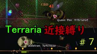【Terraria】頂目指して近接縛り Part7【