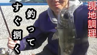 【ぴ】釣って食べる!