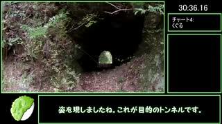 【RTA】休場の木馬道隧道31分18秒10【リア
