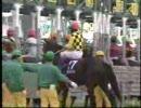 【競馬】2000/エリザベス女王杯(GI) ファレノプシス