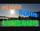釣り動画ロマンを求めて 377釣目 (杉田臨海緑地)