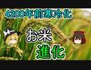 4200年前の寒冷化がお米に進化をもたらした【ゆっくり解説】