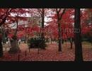191125 京都 真正極楽寺(真如堂)の紅葉を観にいってみた。