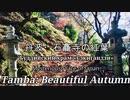 日本の秘境・丹波の紅葉:石龕寺「赤の絨毯を歩く」
