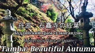 日本の秘境・丹波の紅葉:石龕寺「赤の絨