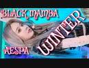 AESPA ♑ BLACK_MAMBA WINTER [Vertical Mirror Fancam] ✅音源入替+回転+反転