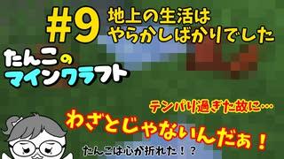 【Minecraft 1.16】たんこのマイクラ #9