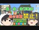 魚・虫・カブ売却&日付変更禁止の森 #7 【あつまれ どうぶつ...