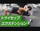 二の腕の筋肉を鍛える!トライセップエクステンションの効果的なやり方【ビーレジェンド プロテイン】