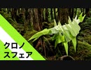 【折り紙】「クロノスフェア」 19枚【森林】/【origami】