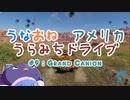 【The_Crew2】うなおねアメリカうらみちドライブ9【Grand Canion】