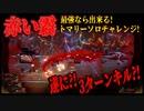 【Library of Ruina】ゲブラーしか勝たん!トマリーソロ達成!【赤い霧】