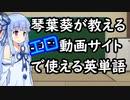 琴葉葵が教える海外エロ動画サイトで使える英単語 アナル編