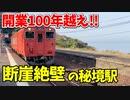 【鉄道豆知識】開業100年越え!行くのが困難な断崖絶壁の秘境駅 訪問記 #33