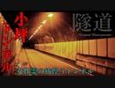 【心霊】超有名心霊トンネル!?数多くの噂を持つ小坪トンネル【ゲッティ】