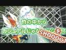 【ポケモン剣盾】タカハシのランクハッシ【ウツロカグヤ】