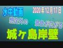 水中動画(2020年12月17日)in 城ヶ島岸壁