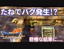 【PS版ドラクエ7】ドラゴンクエストⅦで癒される!たねでバグ発生!?【DQ7】