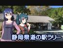 静岡県道の駅ラリー #02・天竜熊【そくドラ!外縁隊】