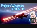 Project Wingman を飛ぶ #7