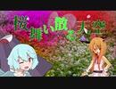 桜舞い散る天ク☆