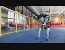 ダンスロボットダンスをロボットがロボットダンスでダンスしてみたでやんす。