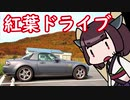 青森グルメドライブ 紅葉と生姜味噌おでん【きりたん車載】