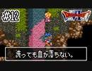 【ドラクエ6】そうだ、自分探しの旅に出よう!【実況】#12