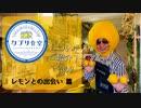 【レモンのお店】カプリ食堂について PART2