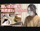 飼い主の顔が突然変わったら猫の反応は!?