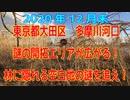 多摩川「(六郷橋付近)に突如現れた「開拓地(更地)」の謎を追え!+ルポルタージュ