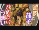 【おしゃれじゃないリアルな一人暮らし飯】鶏と茄子を炒めたらだいたいうまい。