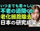 老化細胞を狙い撃ちして除去。アンチエイジングに大きな前進。日本の研究が人類の健康生活を大きく変えるかもしれない研究成果