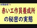 水間条項TV厳選動画第35回