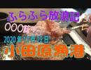 ふらふら放浪記プチ(小田原漁港)in2020年12月22日