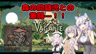 【vagante】姫プ養殖系あかりちゃん達の7