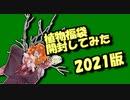 茜ちゃんと厨二植物【植物福袋開封してみた】2021年版