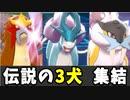 【実況】ポケモン剣盾 伝説の3犬統一パーティでたわむれる