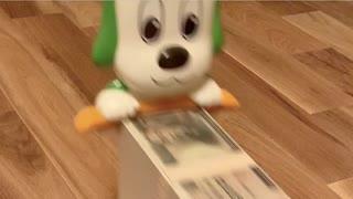 ギャラを貰って帰る資本主義の犬