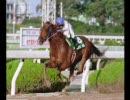 97年度 中央競馬馬主CM