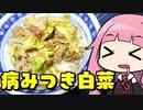 【病みつき白菜】「茜ちゃんが美味いと思うまで」RTA 29:40 WR