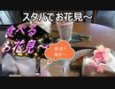 スターバックスの桜商品色々飲食して今年初の食べるお花見し...