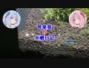 琴葉葵の水槽日記
