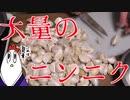 【NWTR】ニンニクの醤油漬けと味噌鰹ニンニク
