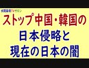 水間条項TV厳選動画第126回