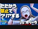 【ポケモン剣盾】たたかう禁止でクリアする!【第九部】