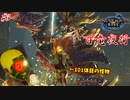 【モンハンライズ】百竜夜行に巻き込まれた101体目の怪物 #3【百竜夜行】