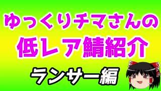 ゆっくり低レアサーヴァント紹介・ランサー編